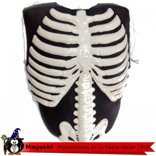 Torso Esqueleto Plastico